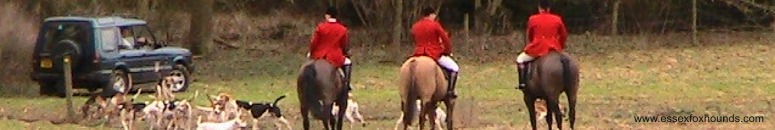 Essex Foxhounds Hunt and Discovery